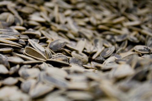 pipas girasol biomasa