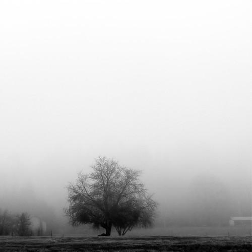 S lection flickr la photographie minimaliste en hiver for Photographie minimaliste