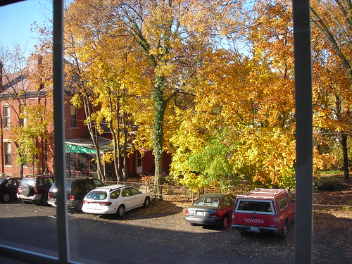 Out the Classroom Window