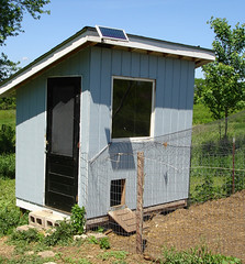 Solar Powered Chicken Coop