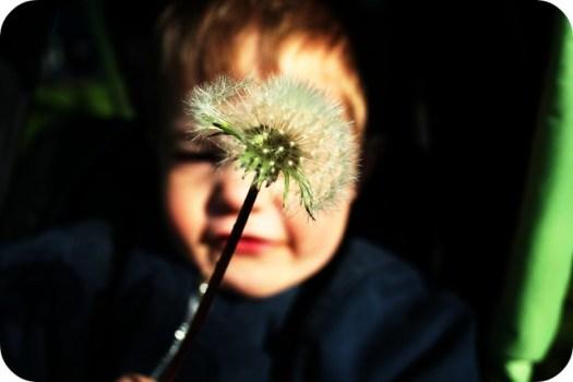 Make a Wish: 04.30.08