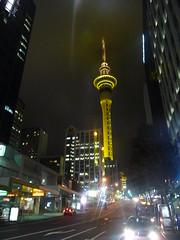 Auckland Scene