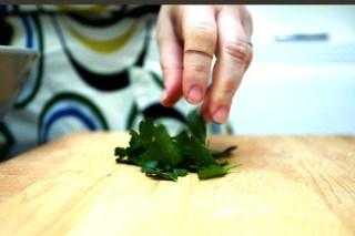 parsley, bandaid