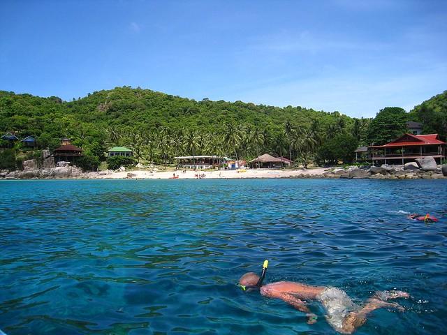Snorkeling off Koh Tao, Thailand