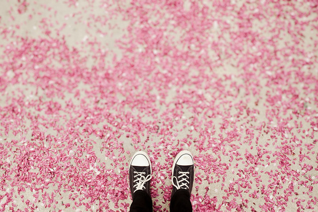 the Sea of Pink
