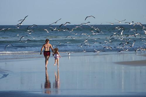 Chasing the Birds by Corbin Elliott Photography, Denver Photographer