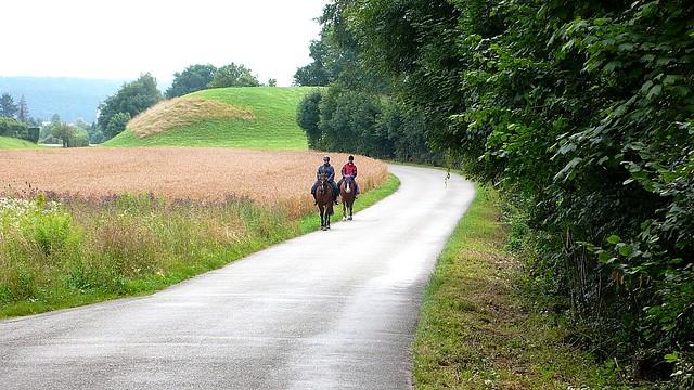 Riders in Feldbrunnen