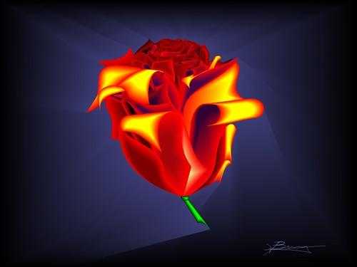 digital rose (tagged)