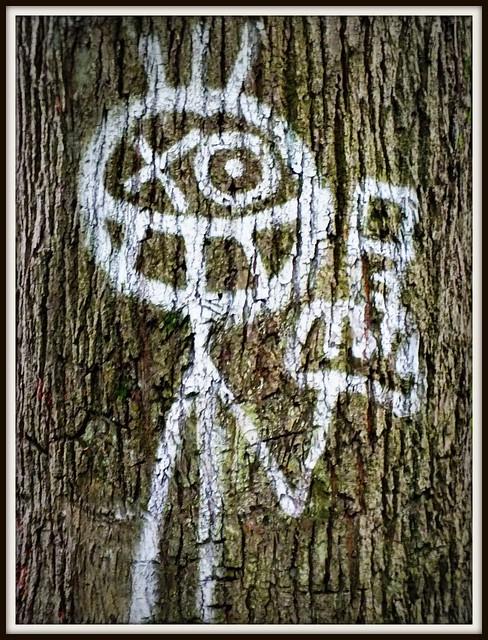 Pontcanna Grafitti