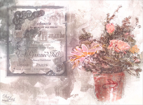 Image of a pot of flowers and some vintage expression