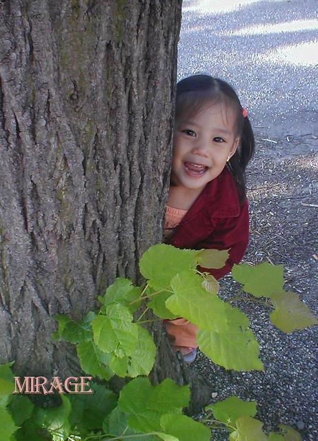 kid behind tree, portraits