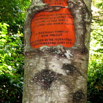 Sign-Eating Tree