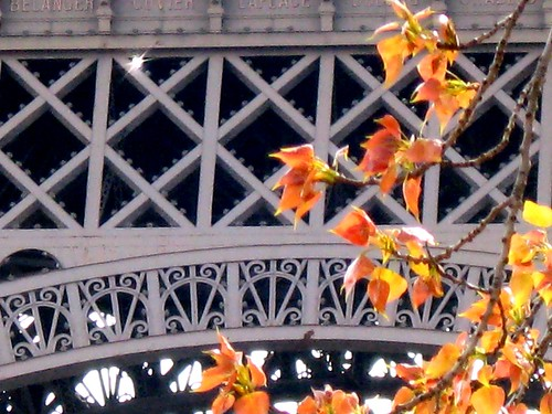 Detail of Eiffel Tower in Spring