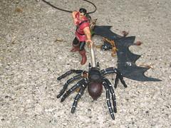 Spider Bat Monster Fight