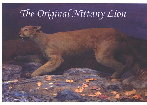 Original Nittany Lion Exhibit | Flickr - Photo Sharing!