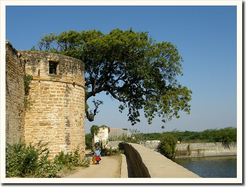 Pond outside of Fort of Tera, Kachchh by Jayesh Bheda