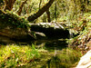 upstream trekking (5) by egotoagrimi