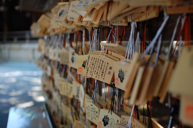Meiji Shrine 6