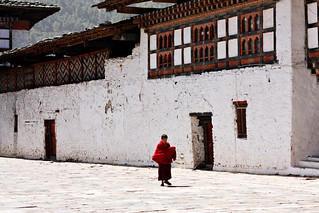 Monk, alone