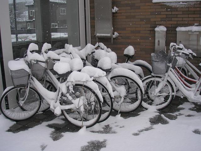 Bikes full of snow...