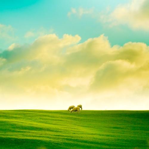 Landscape / Grass / Clouds / Sky por ►CubaGallery