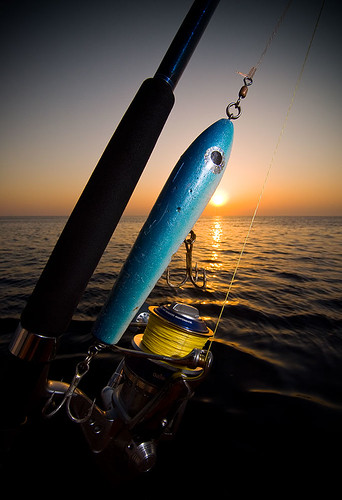 Image of a stickbait, a popular fishing lure for tropical popping. SB800 with honlphoto grid on camera right by Nicola Zingarelli