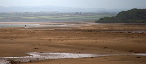 Wide expanse of sand to the river Shannon, green fields and hill on the opposite bank, two small figures -- adult and child -- on the near bank.