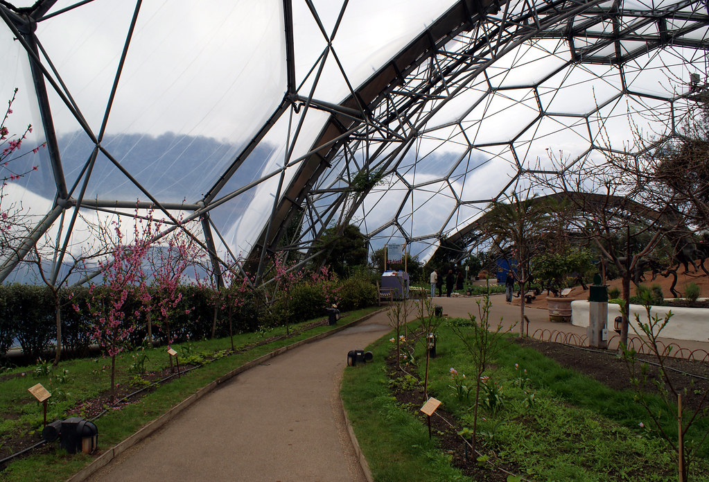 Temperate Biome, Eden Project