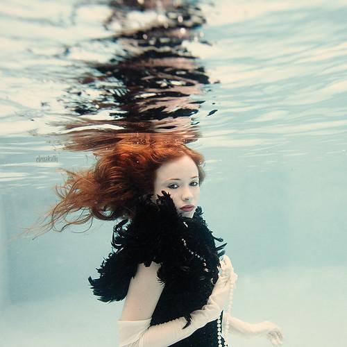 Une serie spectaculaire de photos sous-marines