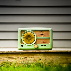 Vintage / Grass / Radio