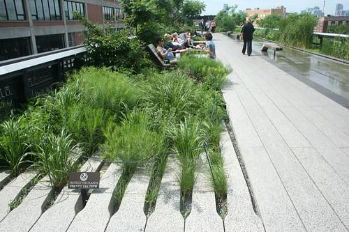 high line foliage