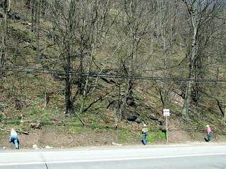 wildflower hunters along Route 22