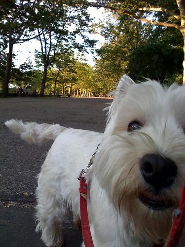 walking in riverside park