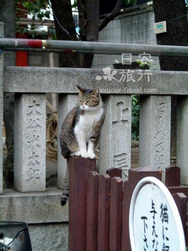 淺草寺 (6)