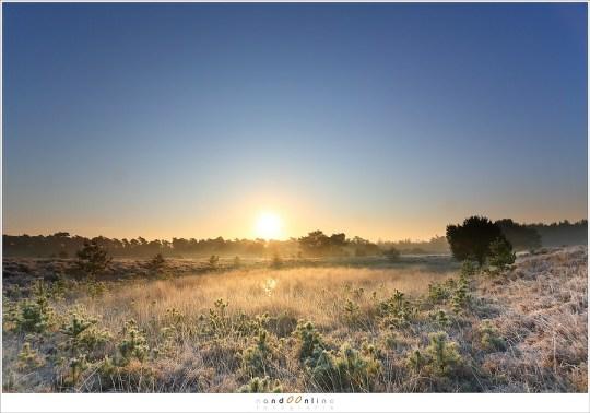 Een ultragroothoek van 17mm (op fullframe) schept de indruk dat het landschap weidser is dan het in werkelijkheid is.