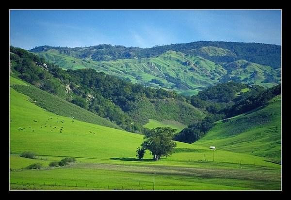 County Property Appraiser: Hillsborough County Property ...