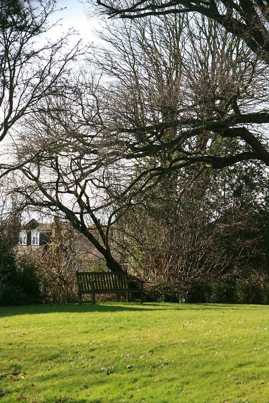 Wimbledon Village 031