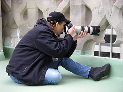 Urban Wildlife Photographer