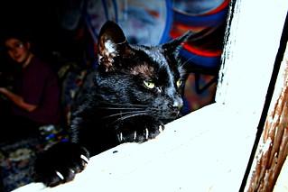 Tsuki, The Grudge