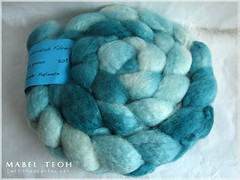 80/20 BFL/Cashmere in Patience from Warratah Fibrecrafts, 104gms, USD16 plus actual shipping