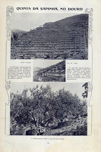 Ilustração Portugueza, No. 541, July 3 1916 - 19 by Gatochy