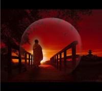 Zen y el arte de...