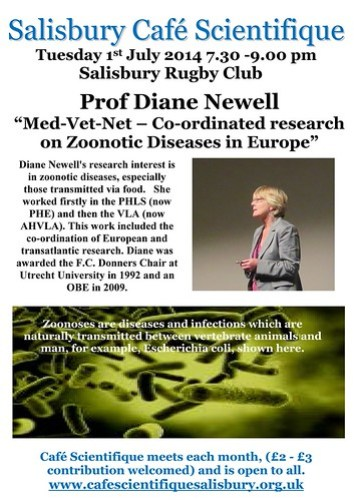 Poster for Prof. Dianne Newell