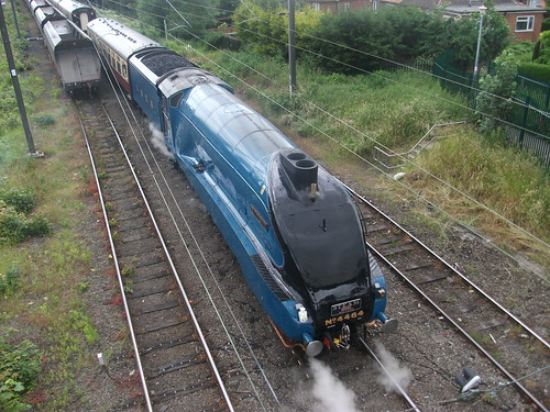 BITTERN - HOLGATE SIDINGS - YORK - 29th JUNE 2013
