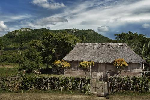 La campiña by Rey Cuba