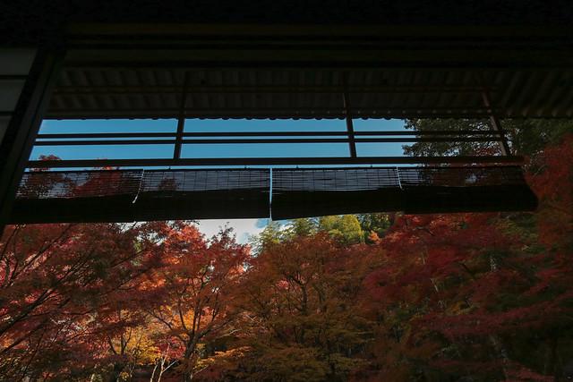 圓光寺 Enkoji