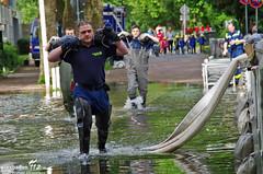 Hochwasser Schiersteiner Hafen Juni 2013