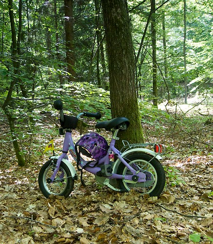 Childs bike locked to a tree