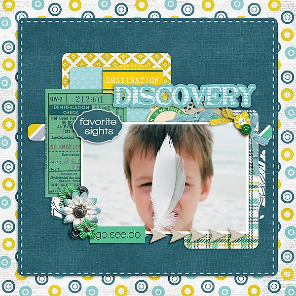 DestDiscovery-copy