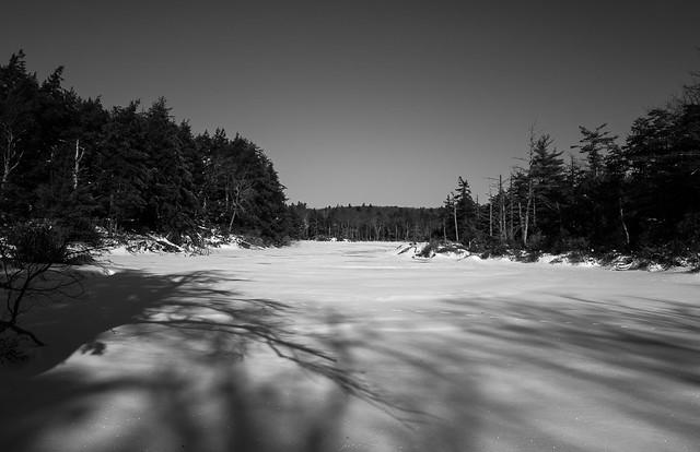 Guilder Pond